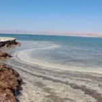 【実体験】死海では本当に浮くことができるのか!?