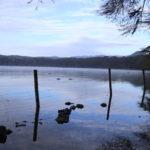 【カバの群れが出現!?】キャンプ場はここ!!! カバの生息地 オロイデン湖!